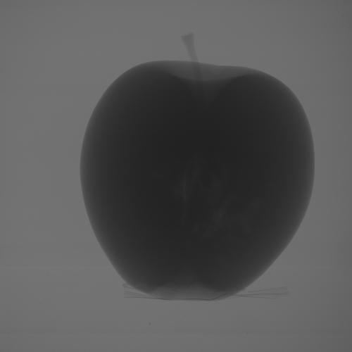 Figure 1. Raw X-ray image of an apple.